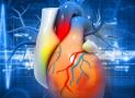 Comment prévenir les troubles cardiaques ?